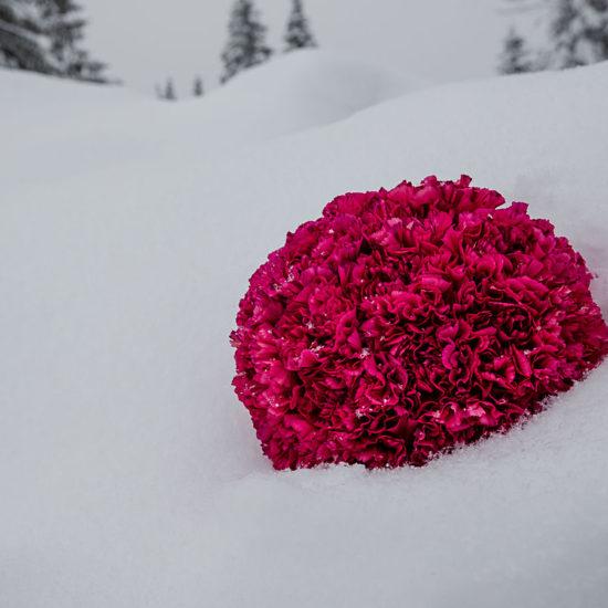 Composition hivernale 3 par Benjamin Créateur floral